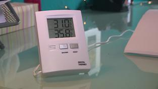 Thermostat (Foto: SR)
