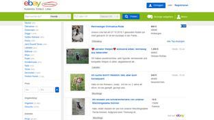 Sr De Haustierkauf Im Internet
